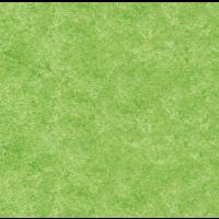 Unistruck grün