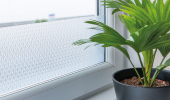 Fensterfolien selbstklebend